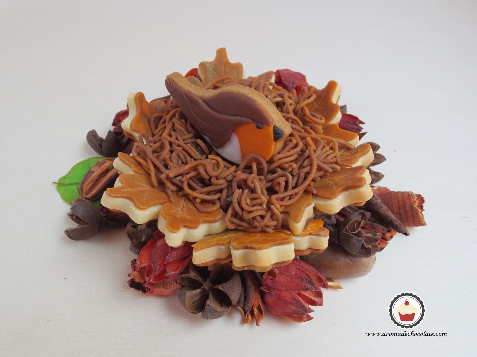 Galleta pequeño petirrojo. Aroma de chocolate