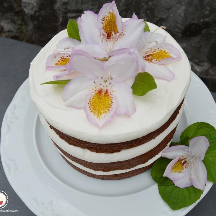 Beet naked cake. Aroma de chocolate
